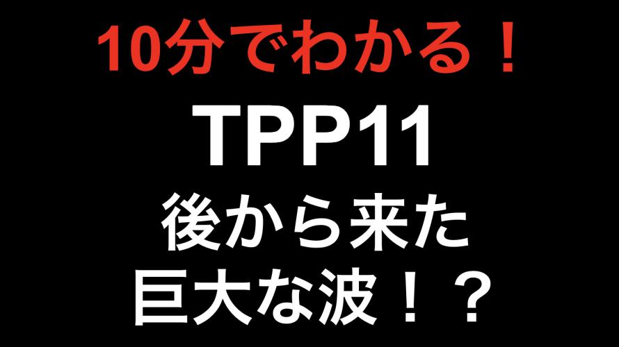 【10分でわかる!!】TPP11  後から来た巨大な波!?