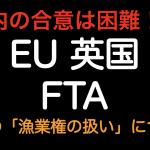 年内の合意は困難!?EU英国 FTAの争点 漁業権の扱いについて
